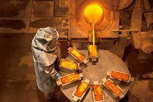 Thâu tóm đối thủ, Barrick Gold thành tập đoàn khai thác vàng lớn nhất
