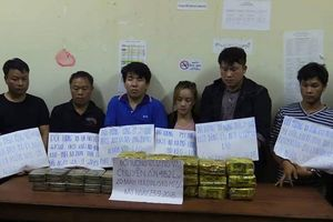 Hà Tĩnh: Triệt phá đường dây buôn bán ma túy khủng xuyên quốc gia