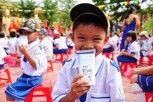 Sữa học đường: Lo ngại cách triển khai