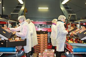 Việt Nam và Ba Lan đẩy mạnh xúc tiến thương mại song phương