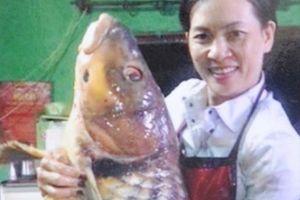 Loài cá thọ 50 năm, hiếm có khó tìm, ẩn mình dưới dòng Sê San