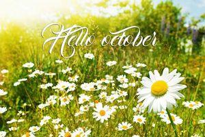 Dành tặng nhau những lời chúc đầu tháng 10 hay nhất để tháng mới đầy niềm vui