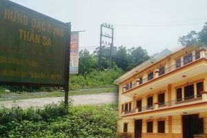 Vụ phá rừng đặc dụng ở Thái Nguyên: Lộ diện doanh nghiệp được 'ưu ái' cấp phép mỏ vàng