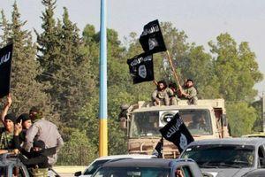 IS không chịu đầu hàng khi quân đội Syria chiếm ưu thế