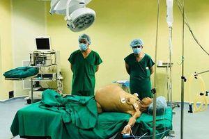 'Bóc' thành công khối u buồng trứng nặng gần 20 kg