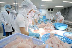Chiến tranh thương mại, cơ hội xuất khẩu cá tra Việt 'giành giật' thị trường Mỹ từ Trung Quốc?