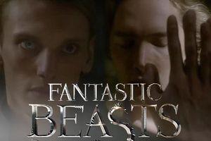 Trailer mới nhất của 'Fantastic Beasts 2' tiết lộ về mối quan hệ đồng tính của Dumbledore và Grindelwald?