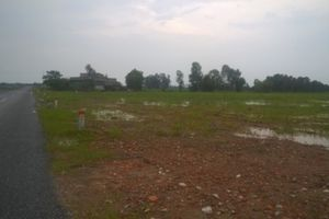 Thanh Hóa: Cần làm rõ việc cho thuê 20.430m2 'đất vàng' làm trang trại rồi bỏ hoang