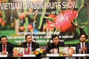Đưa trái thanh long Bình Thuận chiếm lĩnh thị trường Ấn Độ