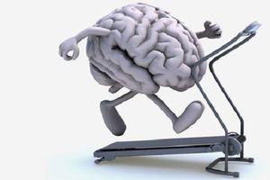 Bỏ ngay 6 thói quen xấu khiến bạn dễ mắc chứng teo não đáng sợ, trí nhớ suy giảm nghiêm trọng