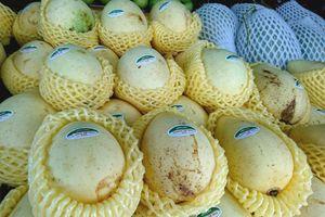 Hà Đông, vẫn còn điểm khó trong kiểm soát an toàn thực phẩm tại cơ sở kinh doanh trái cây