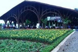 Xây công viên sinh thái tre luồng ở Thanh Hóa