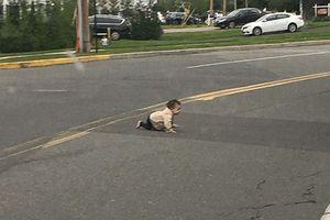 Em bé bò ra đường cái khiến Sở cảnh sát Mỹ phải vào cuộc