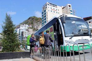 Hải Phòng: Mở thêm tuyến xe điện tại khu du lịch Cát Bà