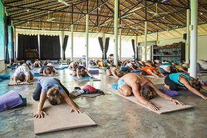 Thiên đường Agama Yoga hay giáo phái 'giác ngộ' bằng… quan hệ tình dục?