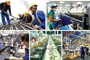 Nhiều ngành của Việt Nam có năng suất lao động cao hơn Hàn Quốc