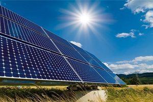 'Việt Nam sẽ nhanh chóng làm chủ công nghệ điện mặt trời'