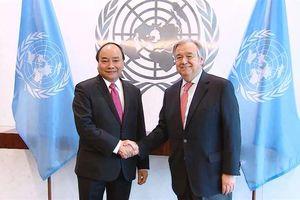 Vị thế, vai trò của Việt Nam tại Liên hợp quốc ngày càng được nâng cao