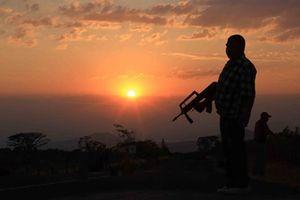 Mexico: Nỗ lực ngăn chặn mafia thao túng nông nghiệp