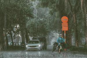 Hà Nội những ngày lặng người ngắm cơn mưa