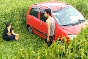 Ô tô phi xuống ủi phẳng ruộng lúa ở Tuyên Quang