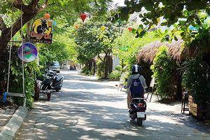 Đà Nẵng: 18 người nước ngoài dương tính với ma túy tại quán 'Mèo Điên'