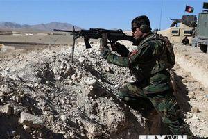 Afghanistan: Nhiều thành viên chủ chốt của Taliban bị tiêu diệt
