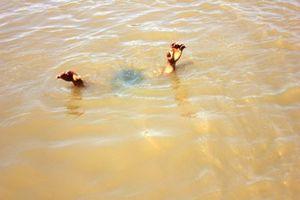 Hai học sinh mầm non tử vong thương tâm trong ao nước gần trường