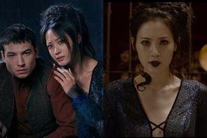 Tranh cãi phân biệt chủng tộc người Châu Á qua vai Nagini của Kim Soo Hyun trong 'Fantastic Beasts 2' - Khán giả Hàn nói gì?