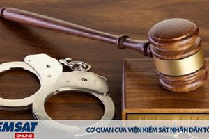 Tổng hợp quyền, nghĩa vụ của người đại diện của người bị buộc tội dưới 18 tuổi