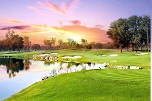 Thể thao Golf mang đến cuộc sống khỏe mạnh