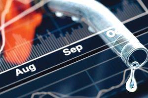 Cổ phiếu dầu khí hút mạnh dòng tiền