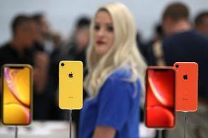 iPhone Xr đã được cấp phép lưu hành