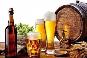 Cân nhắc kỹ về kinh phí phục vụ hoạt động phòng, chống tác hại của rượu, bia