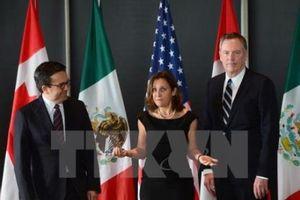 Mỹ và Canada nỗ lực giải quyết những bất đồng còn tồn tại