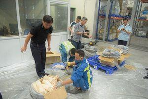 Gần 1 tấn vẩy tê tê, ngà voi trong 2 lô hàng đi máy bay về Việt Nam