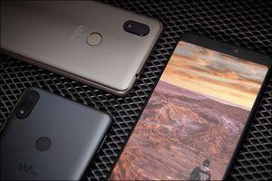 Những smartphone pin 'trâu' nhưng giá chỉ dưới 3 triệu đồng