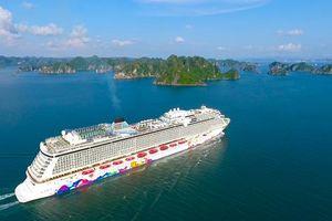 Cảnh đẹp mê hồn khi siêu du thuyền quốc tế tiến vào vịnh Hạ Long