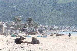 Khánh Hòa: Dự án 'xí' đất bãi biển, gần 30 năm không bị thu hồi