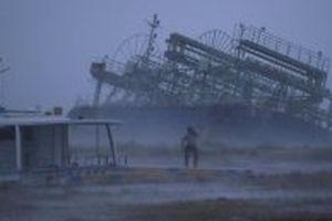 Bão Trami đổ bộ Nhật Bản, gần 80 người bị thương