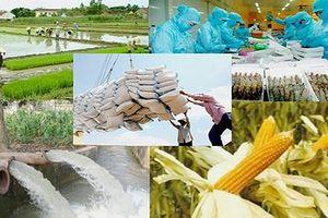 Đã đến lúc đầu tư lớn cho nông nghiệp