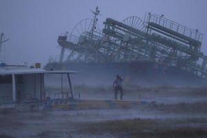 Nhật Bản oằn mình gánh siêu bão Trami có sức gió cuốn bay mọi thứ