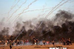 Thủ lĩnh Hamas tới Cairo nhằm cứu vãn thỏa thuận ngừng bắn