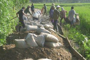 Hà Giang: Khởi sắc sau gần 9 năm triển khai xây dựng nông thôn mới