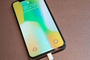 Người dùng iPhone phản ánh thiết bị của mình không thể cắm sạc