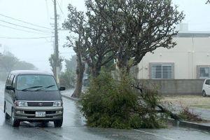 Siêu bão Trami càn quét toàn bộ Nhật Bản, nhiều hoạt động tê liệt