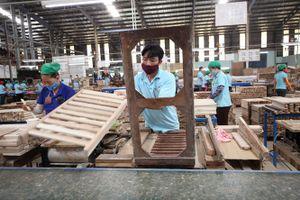 Phát triển ngành công nghiệp chế biến gỗ và lâm sản bền vững