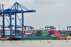 TP HCM lo dính 'đòn oan' từ chiến tranh thương mại Mỹ - Trung