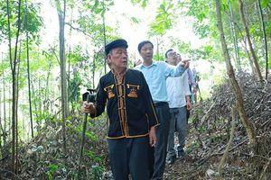 Quảng Ninh có trên 2.500 người cao tuổi làm kinh tế giỏi giai đoạn 2012-2017
