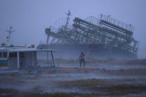 Bão Trami đổ bộ và vùi dập nhiều nơi ở Nhật Bản